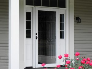 picture of Deluxe Series Storm Door replacement in charlotte nc by ProVia - All Seasons Window & Door Co. 2821 Rosemont St, Charlotte, NC 28208 (704) 399-4244